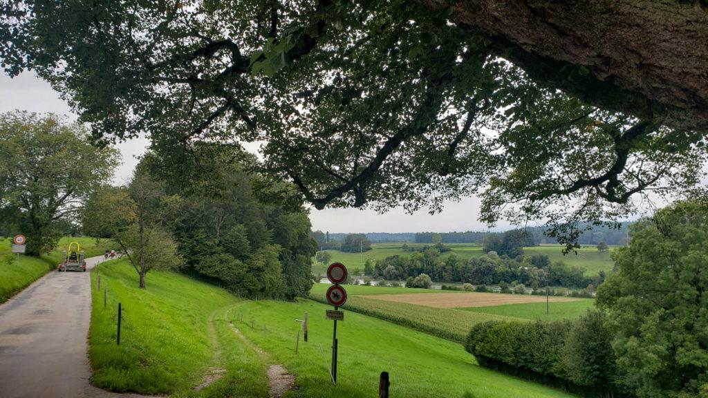 22-August-2019 Serenity in Aarwangen