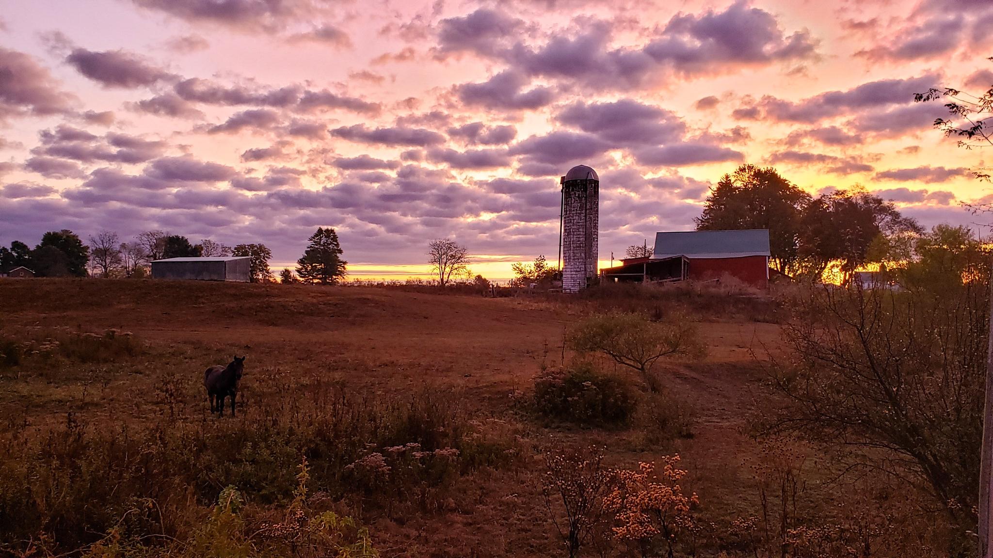 10-October-2019 Autumn sunrise on the farm