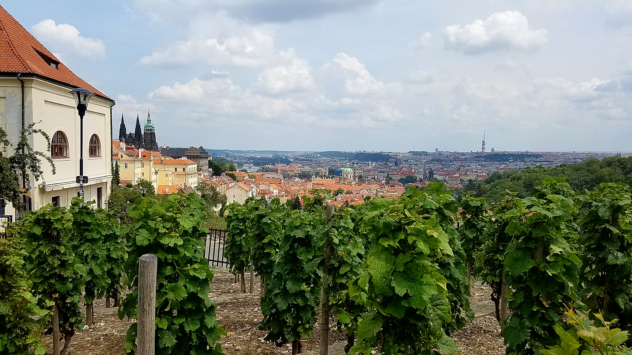 View of Prague from the monastery