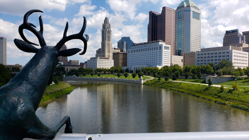 Downtown Columbus from a deer's perspective