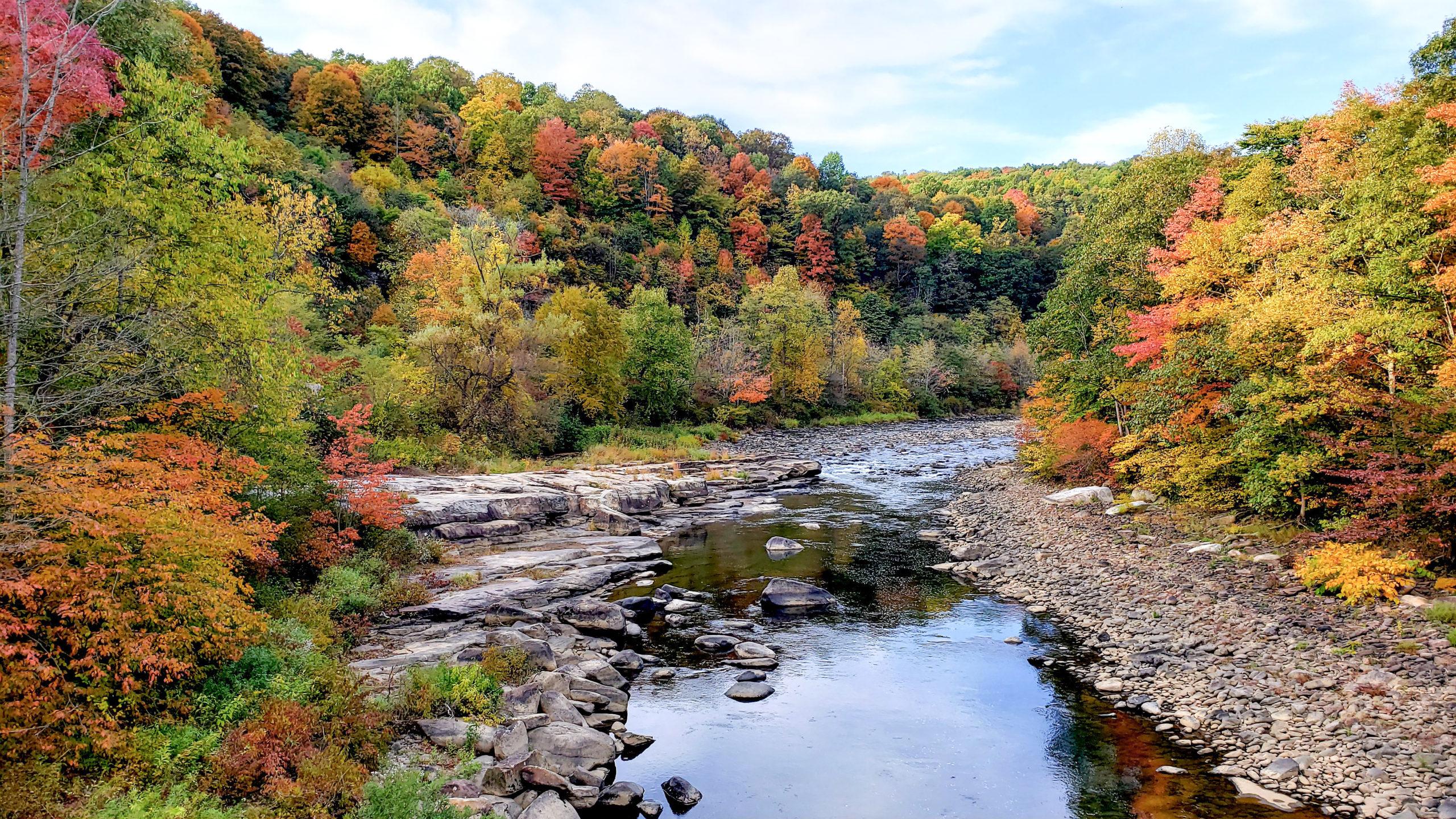 Casselman River at the Pinkerton Horn