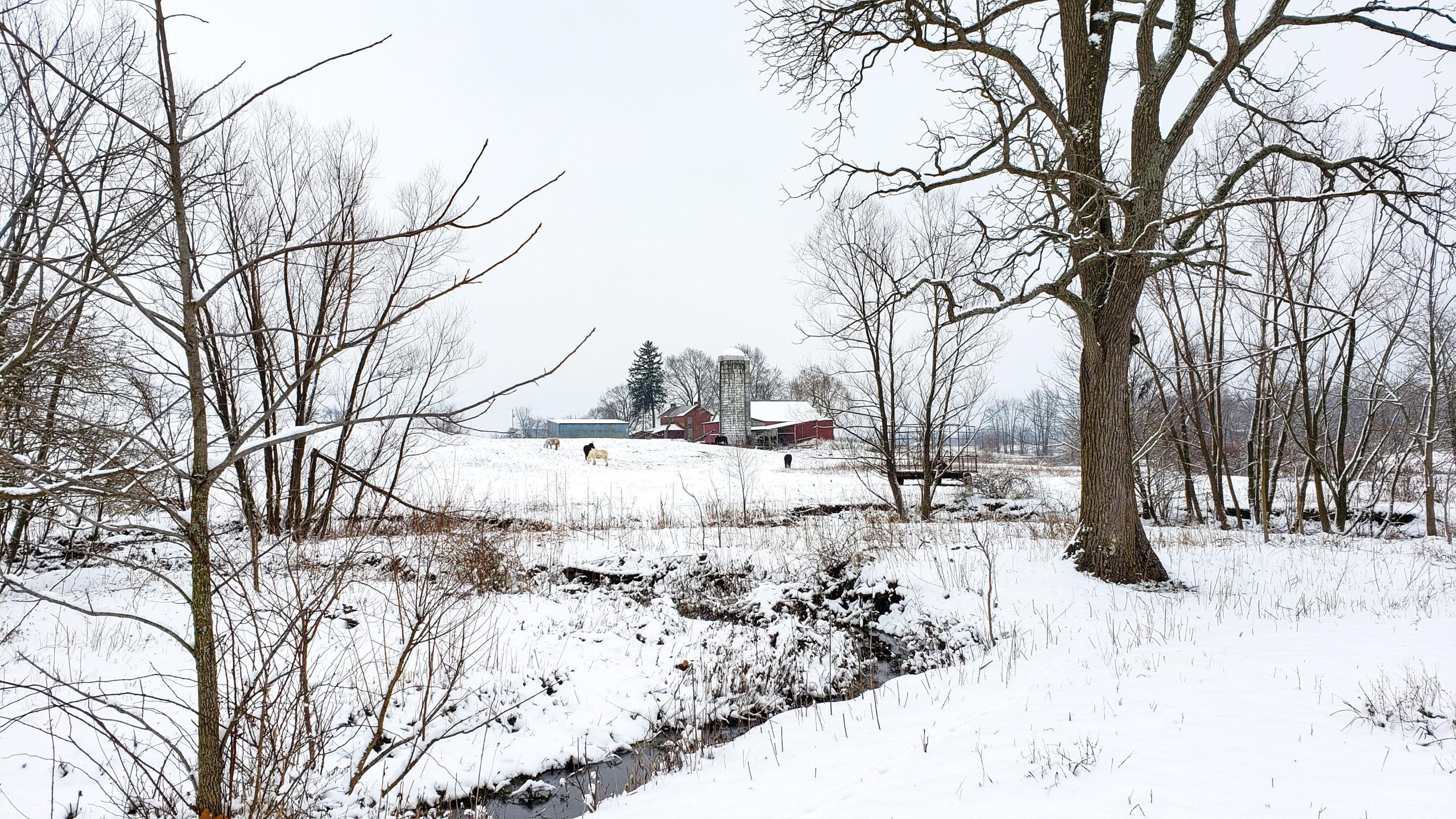 December first snow on the farm
